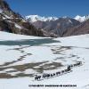 Passage du col d Aghil. 4800 m