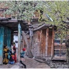 Village kalash