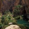 Oman 11