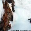 Stage alpinisme 20