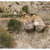 Village sur les flancs du Nanga Parbat
