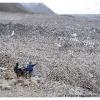 Porteurs de Hispar au dessus du glacier