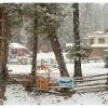 Fairy Meadows - Nanga Parbat