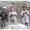 Enfants des vallees kalash