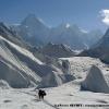Magic day vers Concordia, Gasherbrum IV en ligne de mire